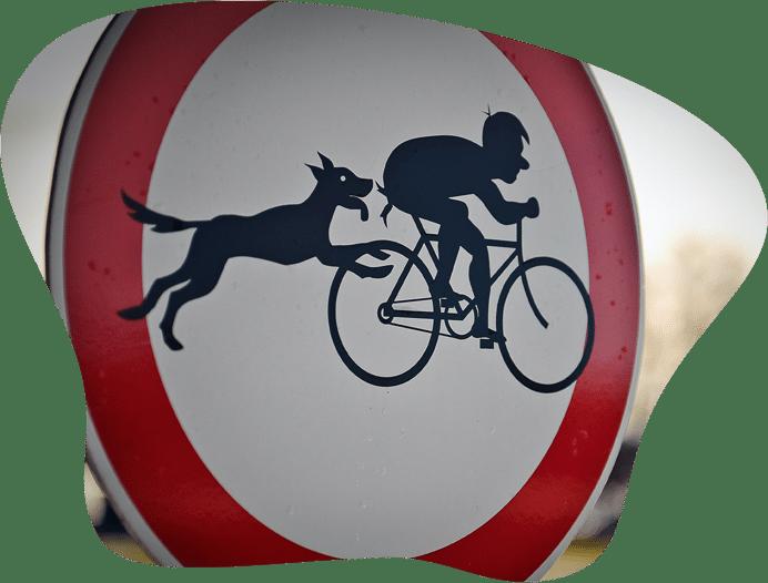 Schild: Hund springt Fahrradfhrer an