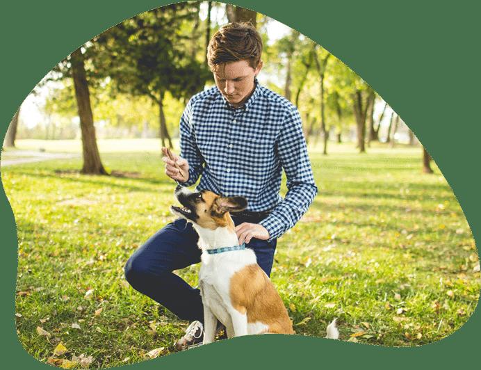 Bild eines Hundes mit Herrchen, als Titelbild zu den Regelungen der Hundehaltung in Deutschland